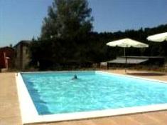 Der große Swimmingpool wird ganz ohne Chlor gereinigt