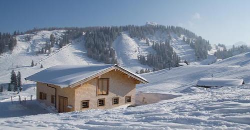 almhuette-lofer-ski-12