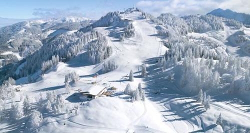 chalet-st-johann-ski-8