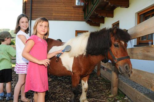 Liebe Ponys erwarten die kleinen Gäste auf dem, zum Hotel gehörenden Bauernhof