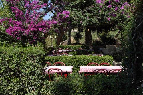 Gut essen und trinken im grünen Garten unseres Familienhotels Mallorca