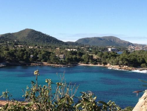 Die Bucht von Font de sa Cala auf Mallorca ist von herrlichem Pinienwald umgeben