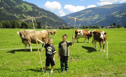 Kleine wie große Kinder helfen gern mit in der Landwirtschaft