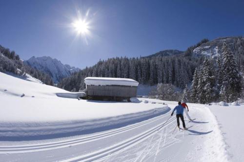 Skilanglauf (Scating) in Gerlos, Zillertaler Alpen, Tirol, Österreich.