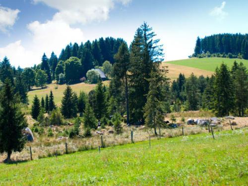familiengasthof-schwarzwald-2