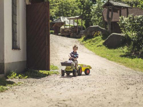 familiengasthof-schwarzwald-3
