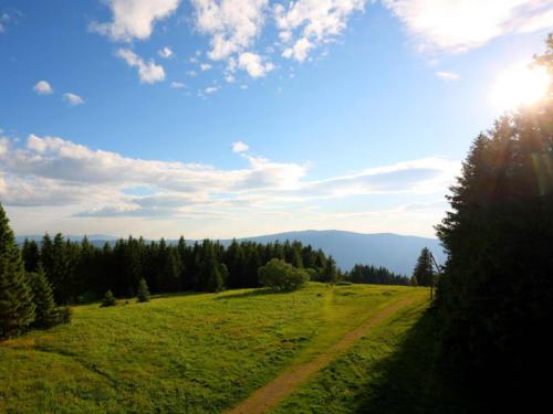 familiengasthof-schwarzwald-4